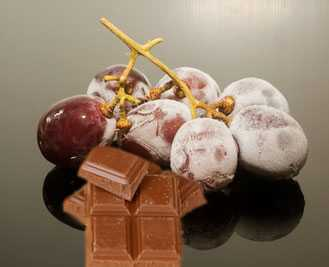 Frozen Grapes Chocolate